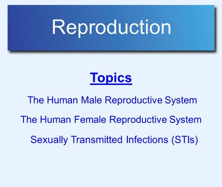 Reproduction Topics The Human Male Reproductive System The Human Female Reproductive System Sexually Transmitted Infections (STIs)