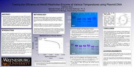 Testing the Efficiency of HindIII Restriction Enzyme at Various Temperatures using Plasmid DNA Kathleen West Marietta Wright, M.S. and Chad Sethman, Ph.