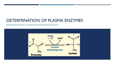 Determination of plasma enzymes