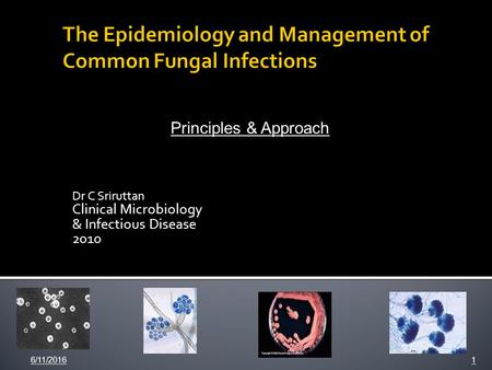 Dr C Sriruttan Clinical Microbiology & Infectious Disease 2010 6/11/20161 Principles & Approach.