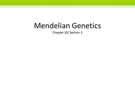 Mendelian Genetics Chapter 10/ Section 2. Mendelian Genetics Copyright © McGraw-Hill Education Gregor Mendel: The Father of Genetics The passing of traits.