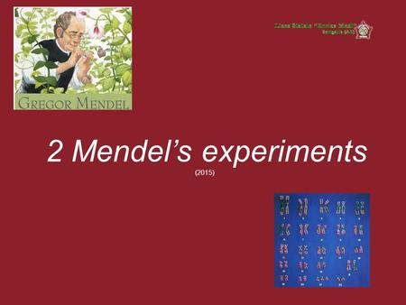 2 Mendel's experiments (2015). Genetics is a biological discipline that studies: the transmission of traits from one generation to the next gene distribution,