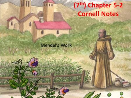 (7 th ) Chapter 5-2 Cornell Notes Mendel's Work. Chapter 5-2: Key Questions What is probability and how does it help explain the results of genetic crosses?