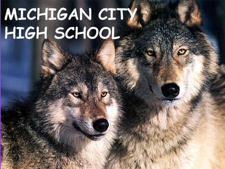 MICHIGAN CITY HIGH SCHOOL. Michigan City High School - VISION Excellence for Everyone.