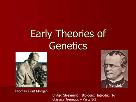 Early Theories of Genetics Thomas Hunt Morgan United Streaming: Biologix: Introduc. To Classical Genetics – Parts 1-3.