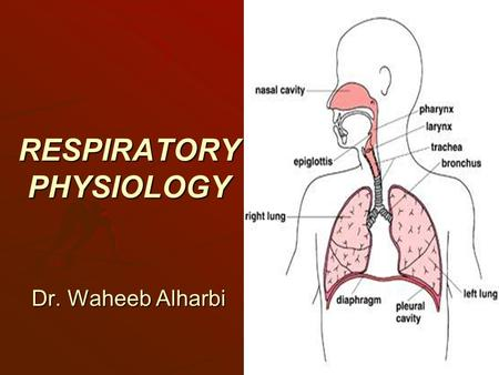 RESPIRATORY PHYSIOLOGY Dr. Waheeb Alharbi. References (1) Physiological basis of medical practice. By; John B. West (2) Medical physiology By; Arthur.
