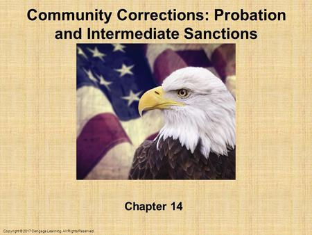 Copyright © 2017 Cengage Learning. All Rights Reserved. Community Corrections: Probation and Intermediate Sanctions Chapter 14.