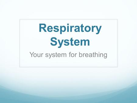 Respiratory System Your system for breathing. Nose.