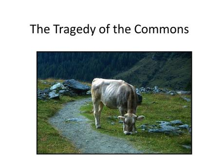 The Tragedy of the Commons. Problems with no technical solution Thomas Malthus (1766-1834, English political economist): Population grows exponentially,