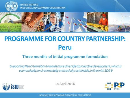 PROGRAMME FOR COUNTRY PARTNERSHIP: Peru Three months of initial programme formulation Supporting Peru's transition towards more diversified productive.