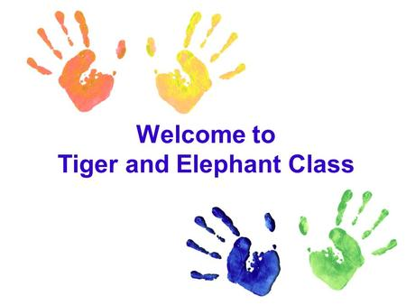 Welcome to Tiger and Elephant Class. Staff Mr Dalton: Mr Dalton is the Principal of the school Mr Jon:Mr Jon is the Head of Primary and overseas all classes.