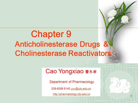 1 Cao Yongxiao 曹永孝 Department of Pharmacology 029-8265 5140;  Chapter 9 Anticholinesterase.