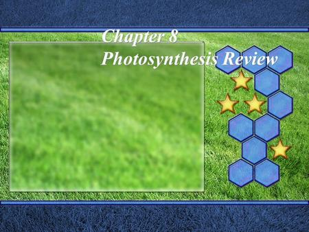 Chapter 8 Photosynthesis Review