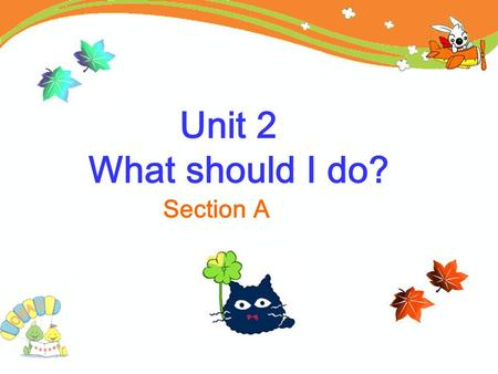 Unit 2 What should I do? Section A. What's the matter? She has a toothache. She should see a dentist. What should she do? He has a fever. He should drink.