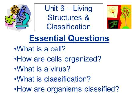 Unit 6 – Living Structures & Classification Essential Questions What is a cell? How are cells organized? What is a virus? What is classification? How are.