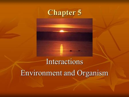 Chapter 5 Interactions Environment and Organism. Environment Everything that effects an organism during its lifetime is collectively known as its ENVIRONMENT.