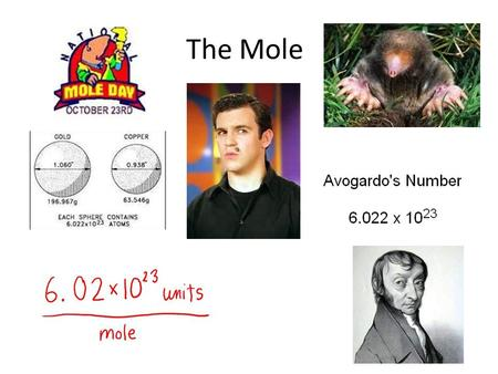 The Mole. How do we measure the amount of a substance? Matter is made of different kinds of particles. We count the number of particles of that substance.