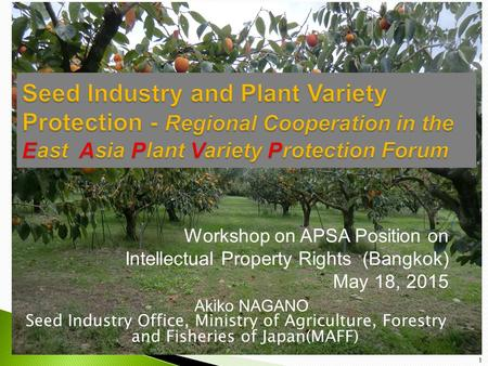 Workshop on APSA Position on Intellectual Property Rights (Bangkok) May 18, 2015 Akiko NAGANO Seed Industry Office, Ministry of Agriculture, Forestry and.