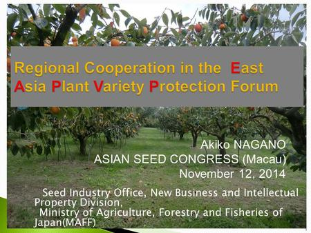 Akiko NAGANO ASIAN SEED CONGRESS (Macau) November 12, 2014 Seed Industry Office, New Business and Intellectual Property Division, Ministry of Agriculture,