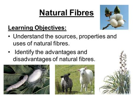 Natural Fibres Learning Objectives: