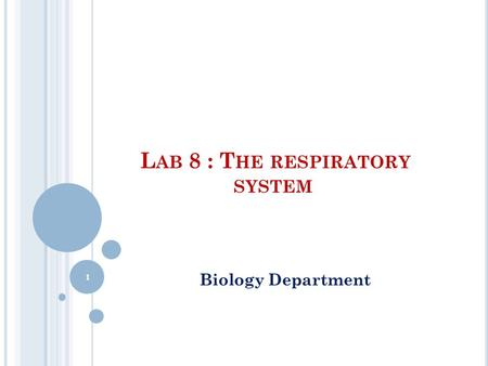 L AB 8 : T HE RESPIRATORY SYSTEM Biology Department 1.