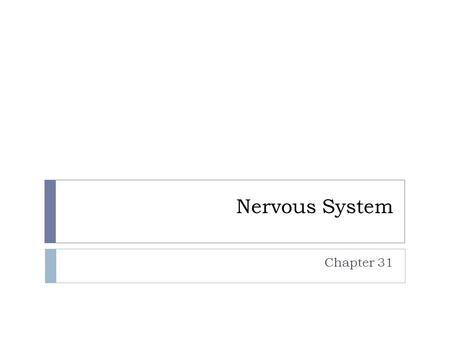 Nervous System Chapter 31. Neurons and Nerve Impulses  Neurons Conduct Electrical Signals  Neuron:  Specialized cells that transmit information throughout.