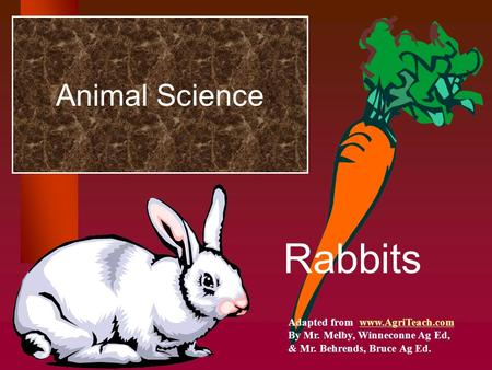 Animal Science Rabbits Adapted from www.AgriTeach.comwww.AgriTeach.com By Mr. Melby, Winneconne Ag Ed, & Mr. Behrends, Bruce Ag Ed.