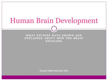 WHAT STUDIES HAVE SHOWN AND EXPLAINED ABOUT HOW THE BRAIN DEVELOPS Human Brain Development Krunal Patel and John Kim.
