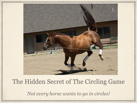 The Hidden Secret of The Circling Game Not every horse wants to go in circles!