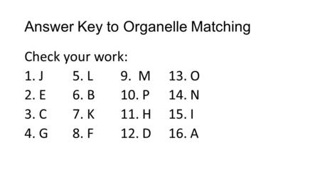 Answer Key to Organelle Matching