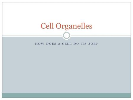 HOW DOES A CELL DO ITS JOB? Cell Organelles. What jobs do cells do? Some examples:  Making proteins, like keratin (hair follicles)  Sending signals.