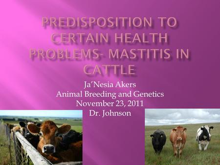 Ja'Nesia Akers Animal Breeding and Genetics November 23, 2011 Dr. Johnson.