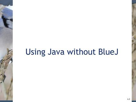 Using Java without BlueJ 6.0. 2 BlueJ projects A BlueJ project is stored in a directory on disk. A BlueJ package is stored in several different files.