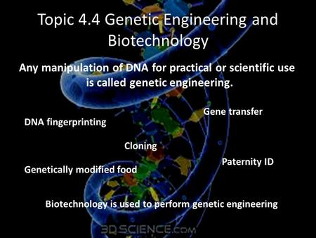 Topic 4.4 Genetic Engineering and Biotechnology Any manipulation of DNA for practical or scientific use is called genetic engineering. DNA fingerprinting.