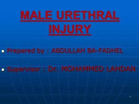 MALE URETHRAL INJURY Prepared by : ABDULLAH BA-FADHEL