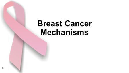 Breast Cancer Mechanisms 1. 2 Her2 3 4 5 6 7.