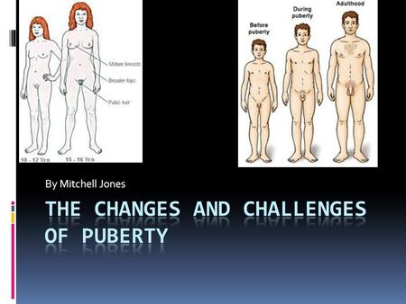 By Mitchell Jones. Definition of Puberty The time of life when sex glands become functional. Our minds begin to change and the way we feel about others.