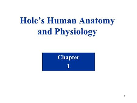 1 Hole's Human Anatomy and Physiology Chapter 1. 2 Chapter 1 Introduction to Human Anatomy and Physiology.