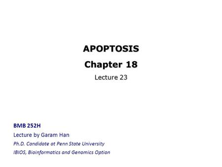 APOPTOSIS Chapter 18 Lecture 23 BMB 252H Lecture by Garam Han