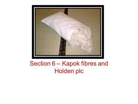 Section 6 – Kapok fibres and Holden plc. Lesson objectives To be able to analyse and discuss sustainability and business To be able to demonstrate knowledge.