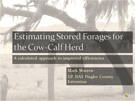 A calculated approach to improved efficiencies Mark Warren UF IFAS Flagler County Extension.