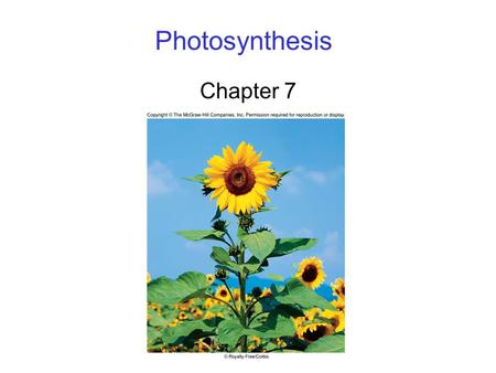Photosynthesis Chapter 7. 2 Photosynthesis Overview Energy for all life on Earth ultimately comes from photosynthesis. 6CO 2 + 12H 2 O C 6 H 12 O 6 +