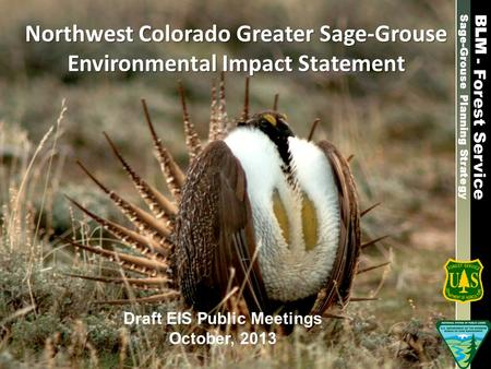 Sage-Grouse Planning Strategy Northwest Colorado Greater Sage-Grouse Environmental Impact Statement Draft EIS Public Meetings October, 2013 - Forest Service.