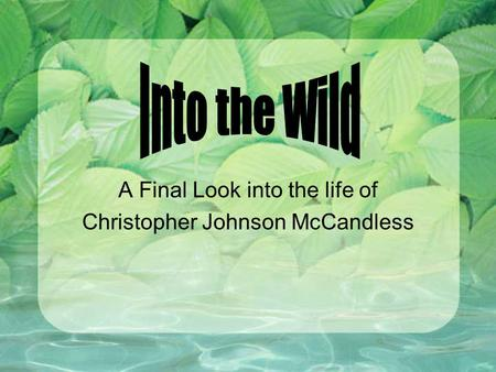 A Final Look into the life of Christopher Johnson McCandless.