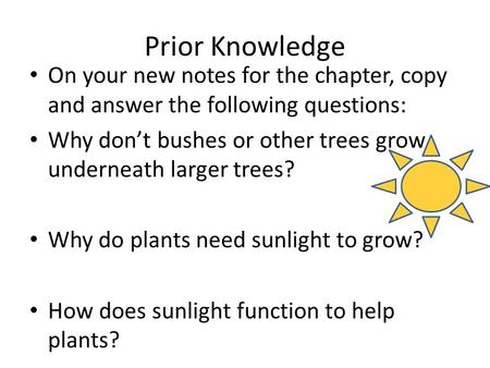 Prior Knowledge On your new notes for the chapter, copy and answer the following questions: Why don't bushes or other trees grow underneath larger trees?