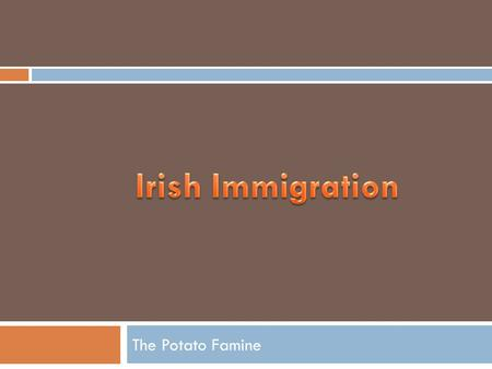 The Potato Famine. Objectives:  To examine the growth of mid 19 th century Irish and German immigration.