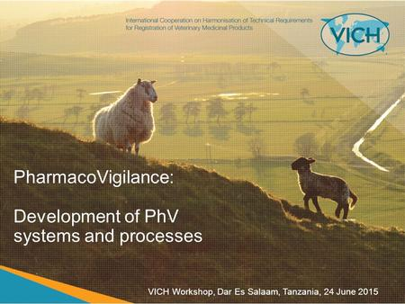 PharmacoVigilance: Development of PhV systems and processes VICH Workshop, Dar Es Salaam, Tanzania, 24 June 2015.