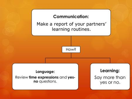 Make a report of your partners' learning routines.