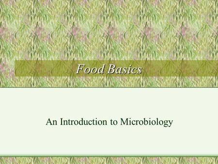 Food Basics An Introduction to Microbiology. Personal Hygiene and Sanitation Rules are not invented to make life harder. Rules are important. REMEMBER.