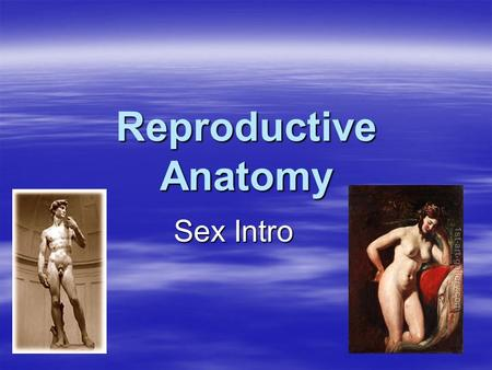 Reproductive Anatomy Sex Intro. Rules  R-E-S-P-E-C-T!!!!!!!!!!!!!  No question is a dumb one.  State your opinion with confidence.  Say anything –